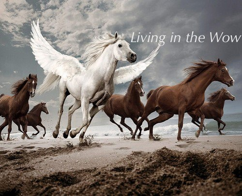 pegasus and horses living in the wow